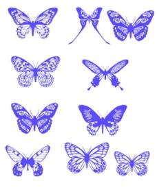 各种不同样式的蝴蝶笔刷