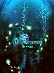 海礁 螢火蟲圖片