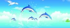 海豚海鸥图片
