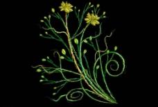 经典绿色花纹图片