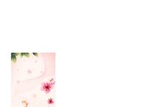 精美的花纹花边图片