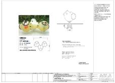 ACLA上海金地云湖花园施工图0297
