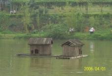 山中的小湖图片