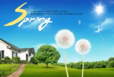 韩国房地产PSD分层素材图片