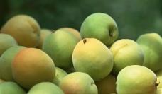 清晰桃子图片