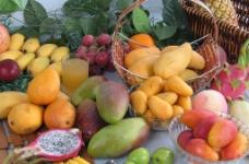 芒果组图图片