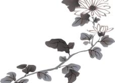 国画—菊图片