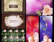 花卉花边素材图片