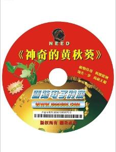 电子商务-光盘设计图片