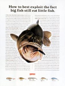 2003广告年鉴0449