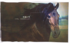 平面获奖作品三0088