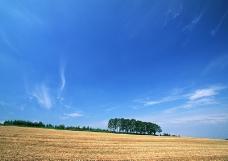 陸地曠野0121