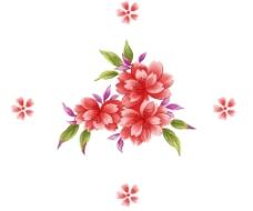高清超漂亮的花图片