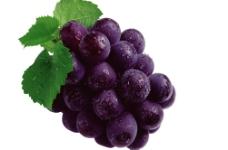 震撼高清水果之葡萄图片