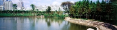 上海绿化景观图片