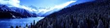 雪山森林图片