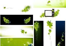 时尚春天绿叶蝴蝶背景图片